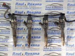 Injector diesel Renault Megane | images/piese/299_sam_4772_m.jpg