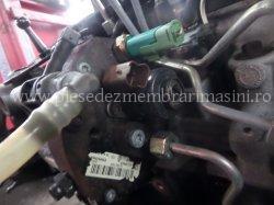 Injector diesel Renault Megane | images/piese/981_sam_4610_m.jpg